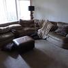 Jagger loves Brian's sofa.