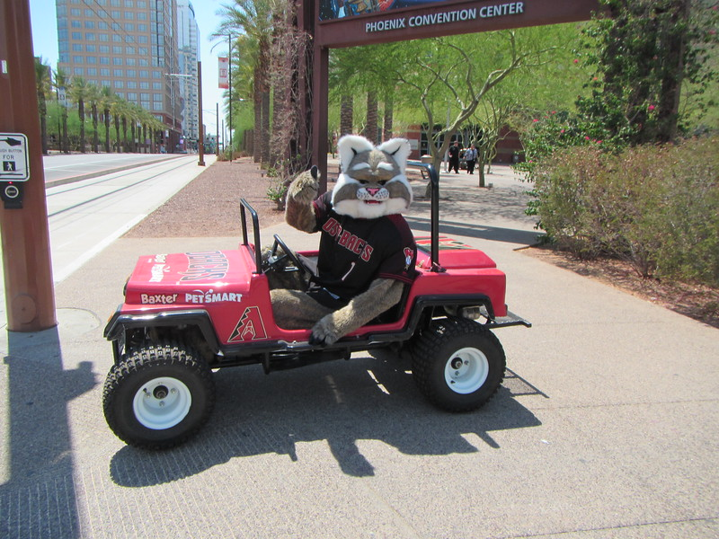 While crossing the road for a Pokéstop, I ran into D. Baxter the Bobcat, the mascot of the Arizona Diamondbacks.