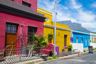 South Africa (1264 of 5206)