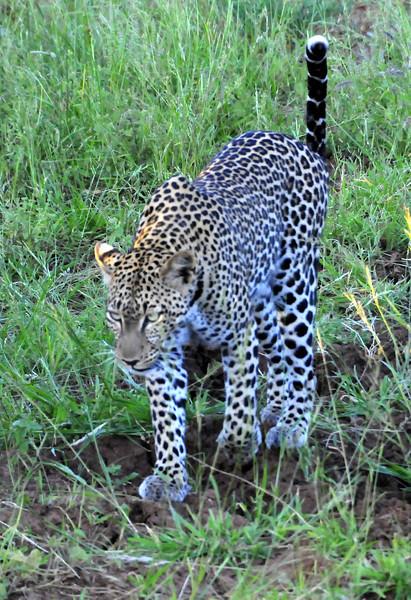 Sambura, Kenya