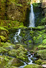 Dickson Falls (Fundy National Park)