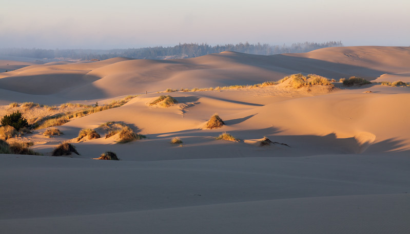 Oregon Dunes NRA