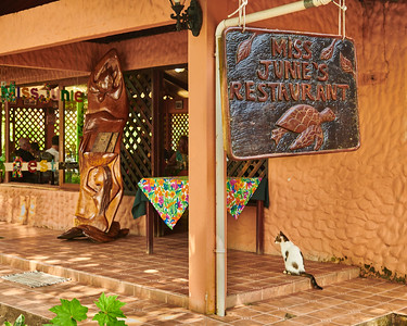 Tortuguero Village; Miss Junie's Plus Cat