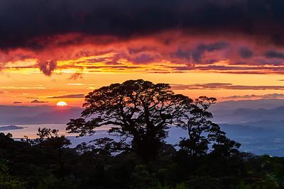 Monteverde to the Sea