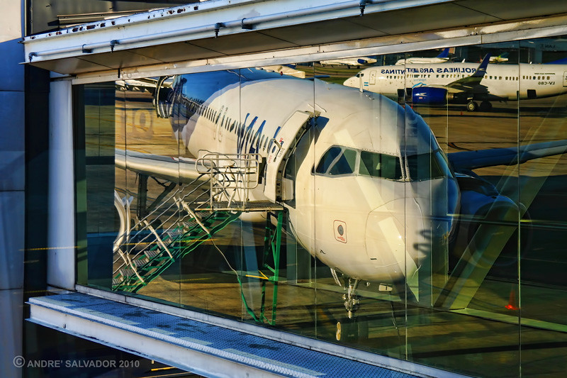 A reflecttion of a plane on the curtain wall of the airport.