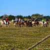Horseback riding is a great introduction to the gaucho culture, which, unlike that of the American cowboy, is still thriving. Many horseback riding expeditions use estancias, or guest ranches, as a launching point for excursions. Here you can experience Argentine ranch life at its most authentic, since most estancias allow you to witness and even often participate in daily activities. By visiting an estancia you have access to some of the best riding locations in Argentina that are often in the remote valleys and vast pampas that teem with wildlife