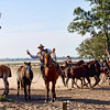 Horseback riding has played a huge role in life at an estancia and is one of the most popular ways to explore the vast regions of Argentina. Some estancias specialize in breeding horses and offer ideal conditions for travelers wanting the ultimate horseback riding vacation. Ranging from beginner to expert levels, these ranches usually offer guided trail rides, polo lessons, and a chance to ride along with the gauchos as they go about their daily ranch activities. There are even a few that will let small groups of guests take on roles almost to the point of being a gaucho for a week or more. At the other extreme, some ranches also have their own tack shops and will outfit a guest in gaucho apparel and equipment whether he or she ever rides a horse. Those estancias that cater more to serious riders tend to be located to the north and far south of Buenos Aires while dude ranches can be found on the outskirts of almost all major cities in Argentina.