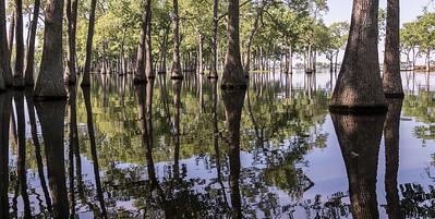 Miller Lake, Louisiana