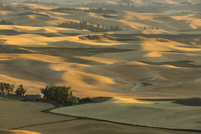 sunset, Steptoe Butte, Washington