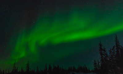 Northern Lights, Churchill, Manitoba, Canada