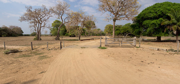 Northern Pantanal, Brazil