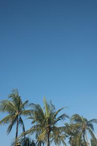 New Year in Bali