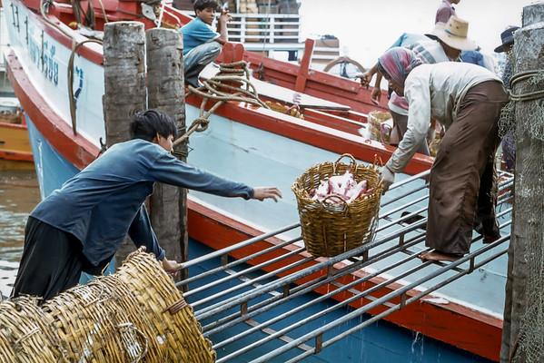 Pak Nam Fish Market, May 10 1979