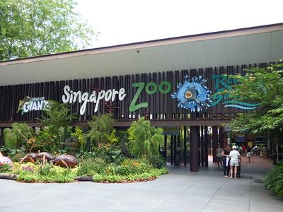 2017 Singapore Zoo