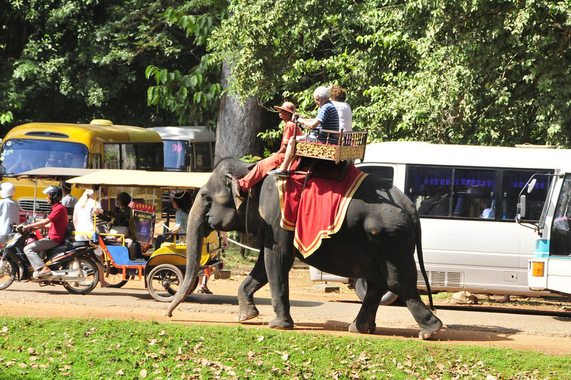 Angkor Thom, located near Siem Reap - touristy elephant rides