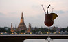 Wat Arun and Wat Cocktail ;-)
