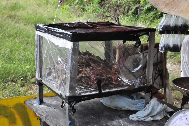 On the road from Ayutthaya to Sukhothai --- roadside stand of roasted rice field rats!