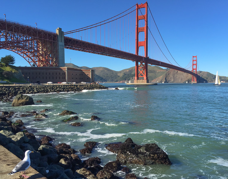 Golden Gate Park, San Francisco, California