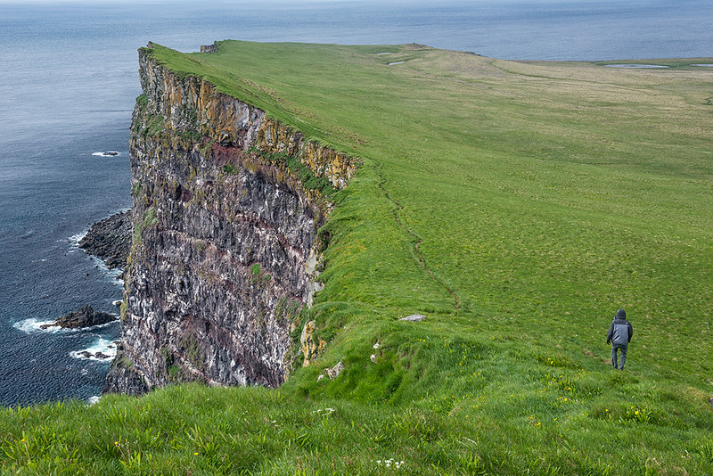 Latrabjarg Bird Cliff Hike, West Fjords