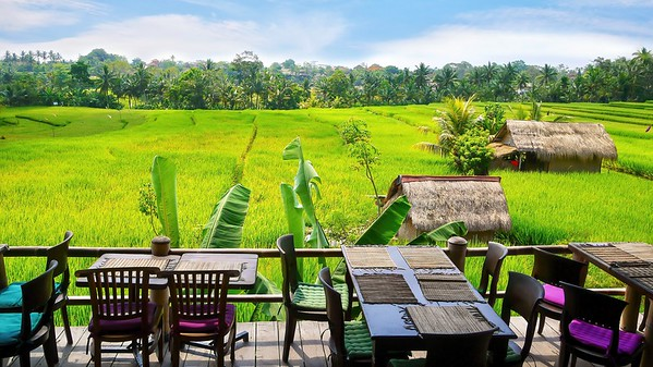 Restaurant in a rice field