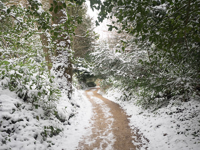 Winter wonderland in the grounds of Prior Park.