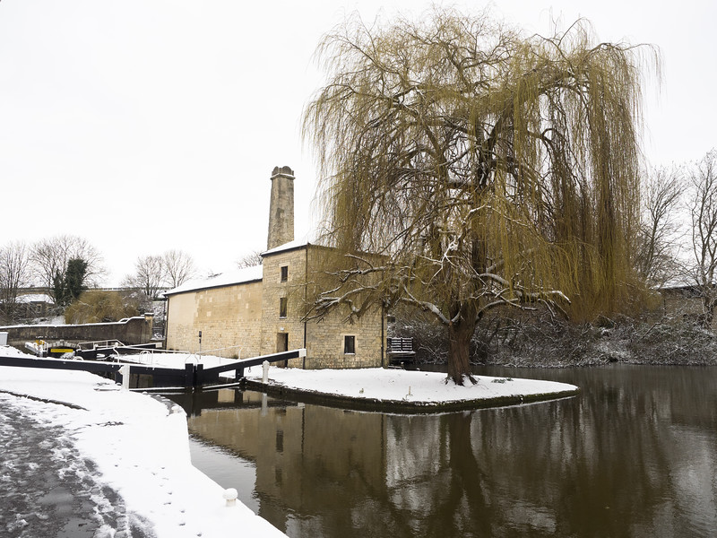 An old mill/pump house and weeping willow by the canal, as I walked out to Prior Park.