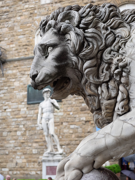 Into the lion's den, in Piazza Del Signoria.