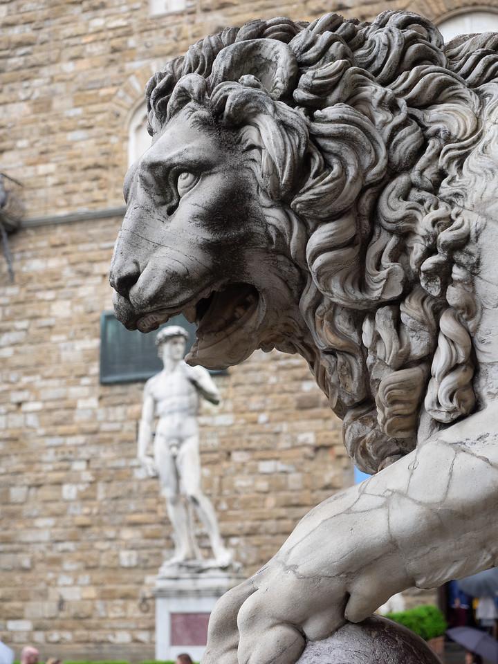Into the lion's den, in Piazza Del Signoria.
