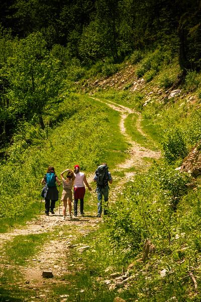 Hiking in La Ferrière