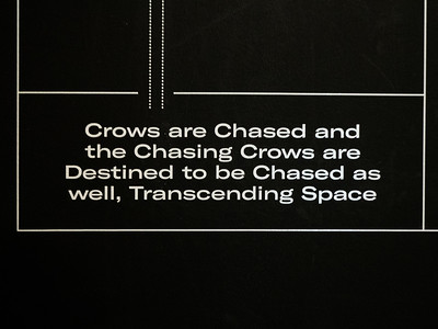 Err...yes...chasing crows transcending space....that's just what I thought, too. A description of one of the installations.