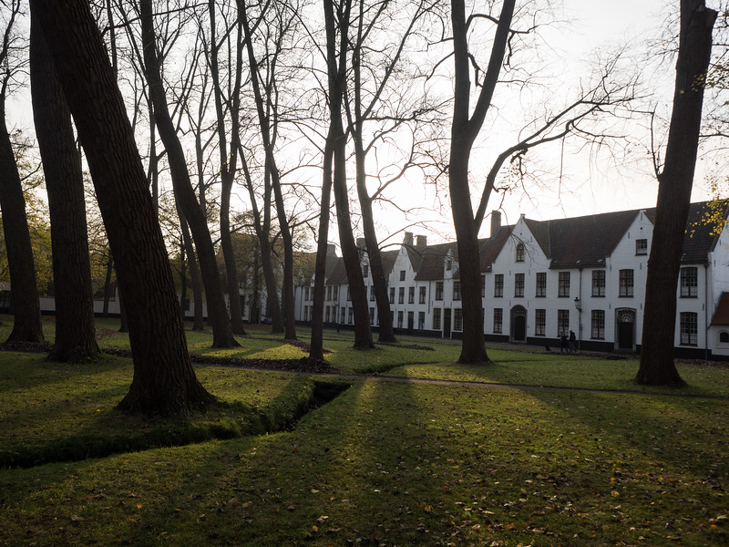 Houses in the Begijnhof, originally a Medieval community setup to home widows and unmarried women. Even today the houses are occupied by women (including nuns).