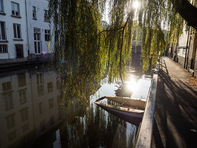 Lovely Autumnal light in the afternoon, walking by one of the canals.