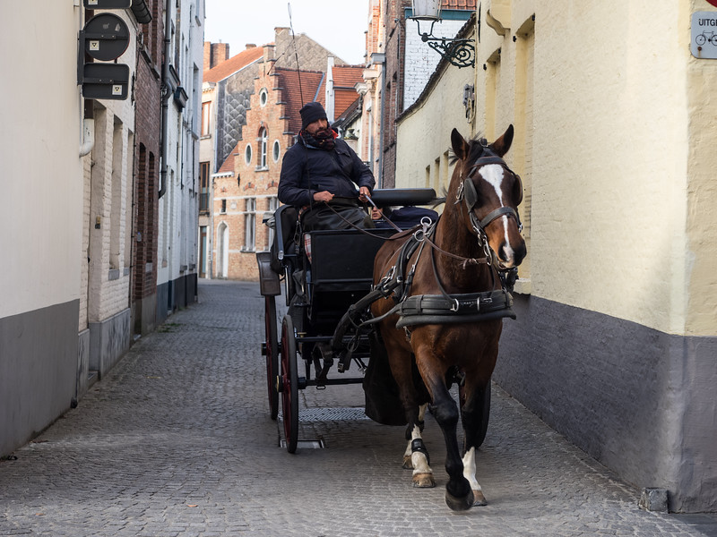 A nice way to get around Bruges. Even in November the town was full of tourists, much more so than Ghent, which felt more like an ordinary but beautiful city.
