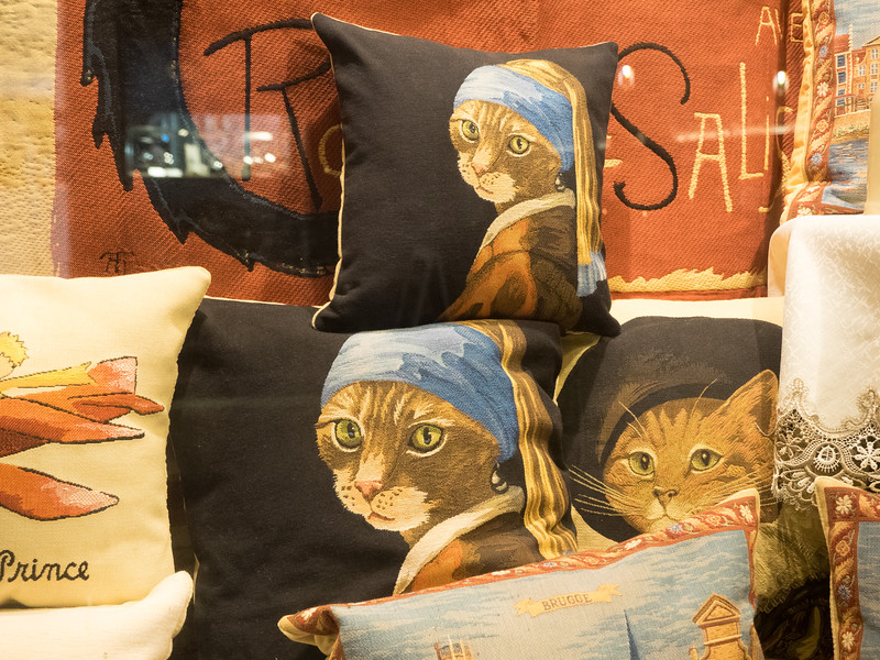 This seemed to be another Belgian thing; cushions with vaguely unsettling pictures of animals.