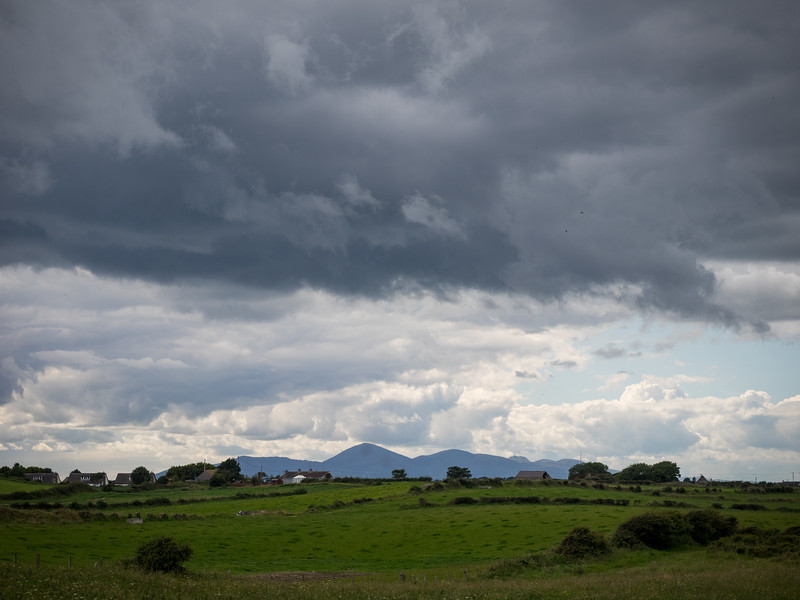 The Mourne mountains in the distance.