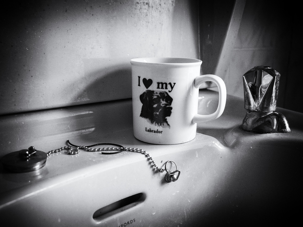 I ❤ My Labrador
