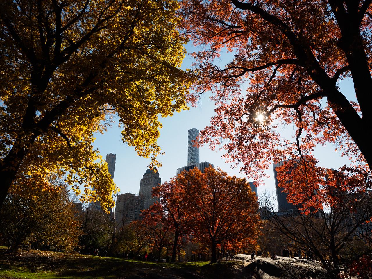 Fantastic Autumn colours.