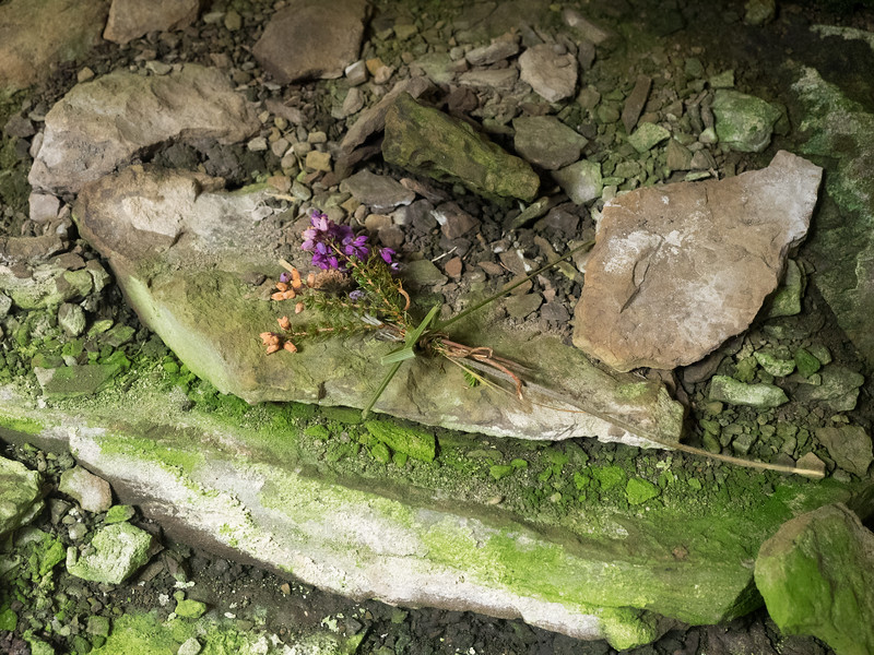 Someone had left a posey of flowers inside this Neolithic tomb. There was the withered remains of another posey nearby, so  it looks  like someone regularly does  this.