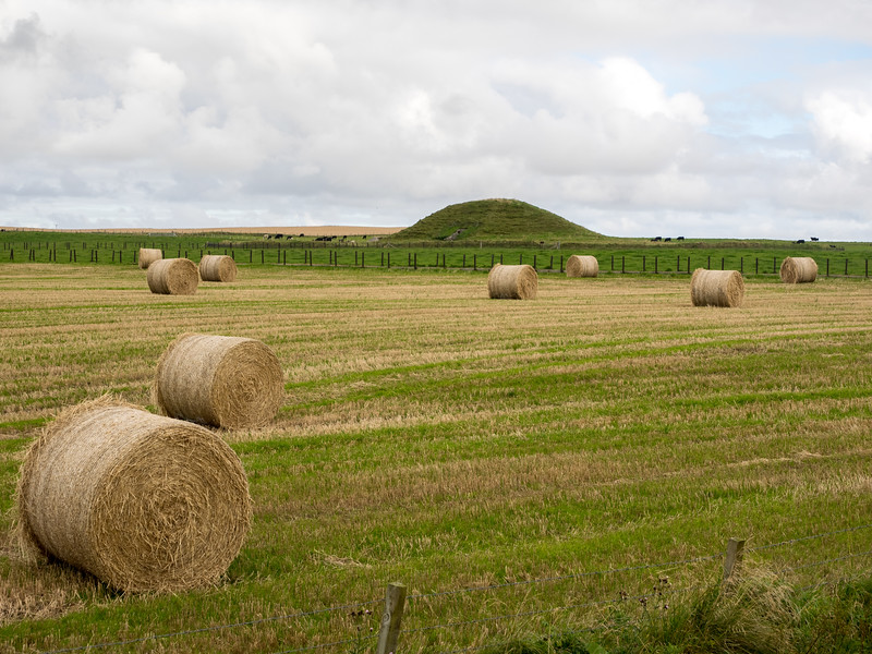 The Neolithic chambered tomb of Maeshowe on the horizon. Like a small Newgrange.