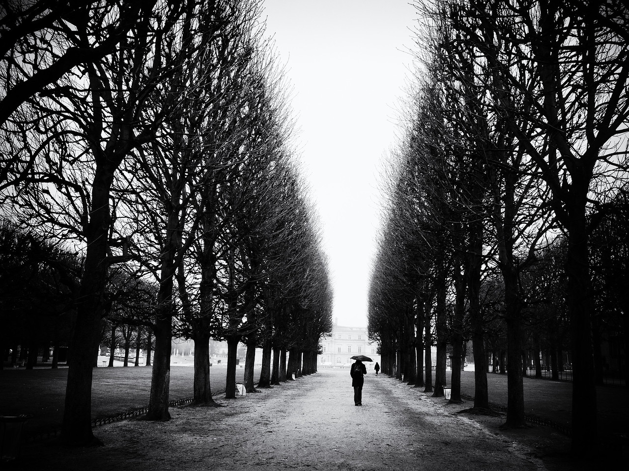 In Jardin de Luxembourg on another drizzly day.