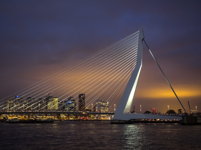 The beautifully elegant and ethereal Erasmus bridge, completed in 1996. It's supposed to resemble a swan. At night it looked absolutely beautiful.
