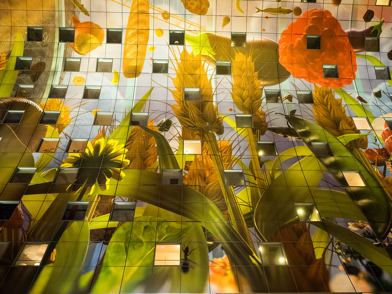 Looking up at the ceiling of Markthal, decorated with huge paintings of agricultural produce. The windows are actually into people's apartments, built into the sides of the building.