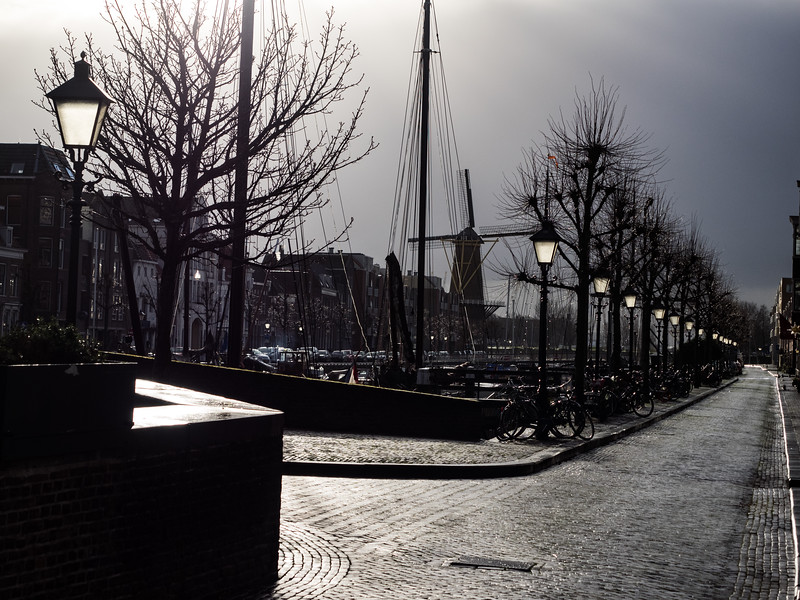 The weather while I was in Rotterdam was generally very overcast but in Delfshaven the sun came out (briefly). The street lamps looked like they were turned on, with the sunlight shining through them.