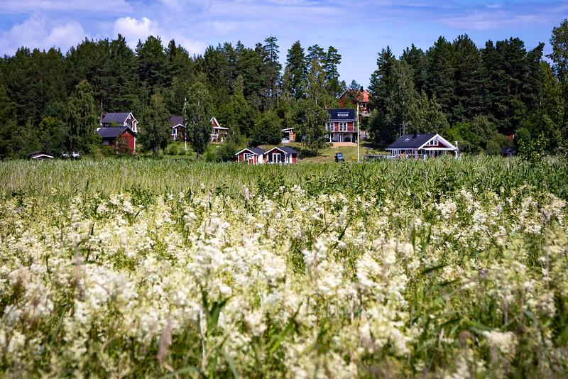 Living on Svartsö Island