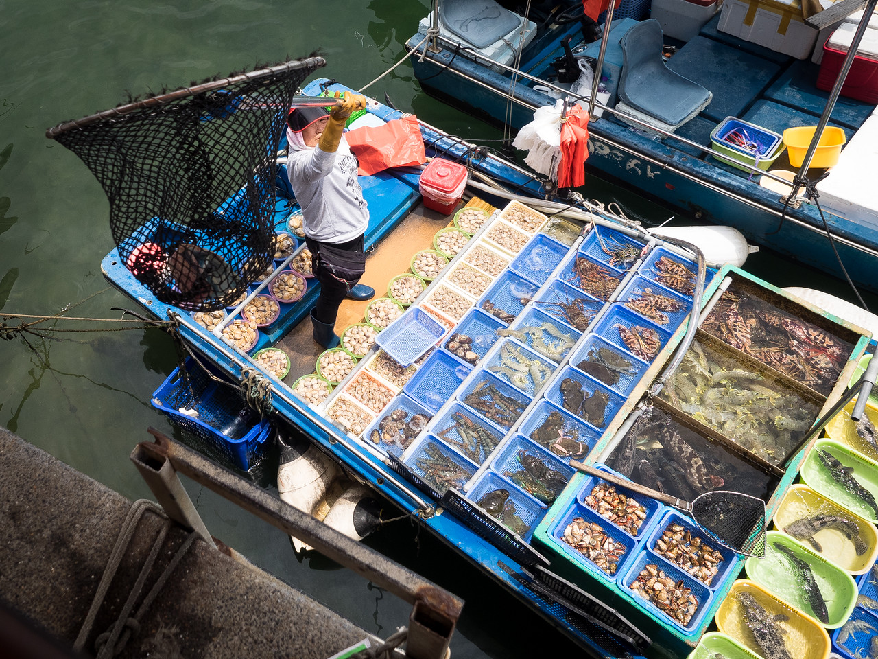 Catch of the day; waiting at Sai Kung to get the ferry to the island there were plenty of options for fresh fish.