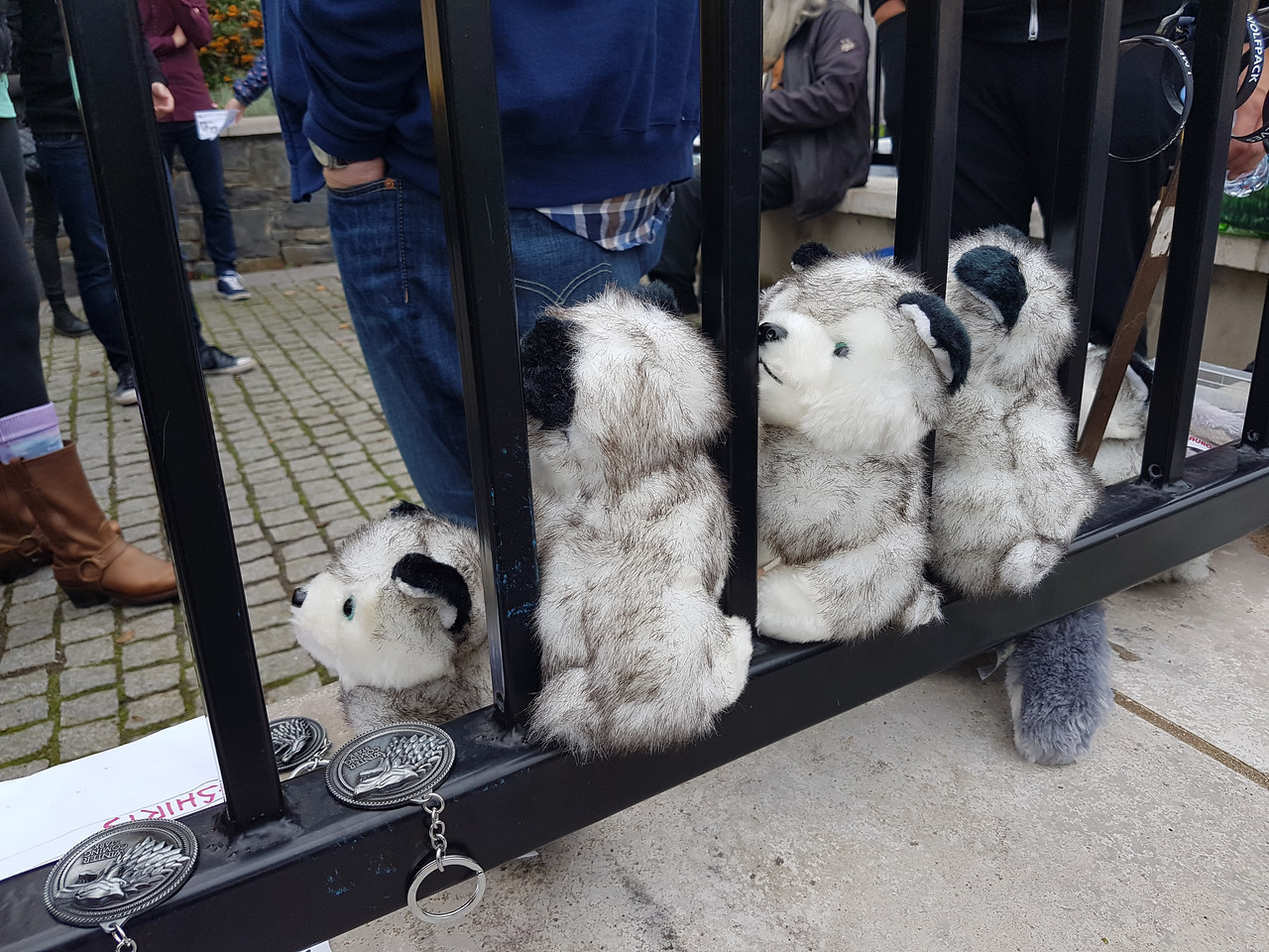 Cuddly Dire Wolves!