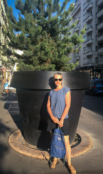 Lyon Has Really Big Flower Pots