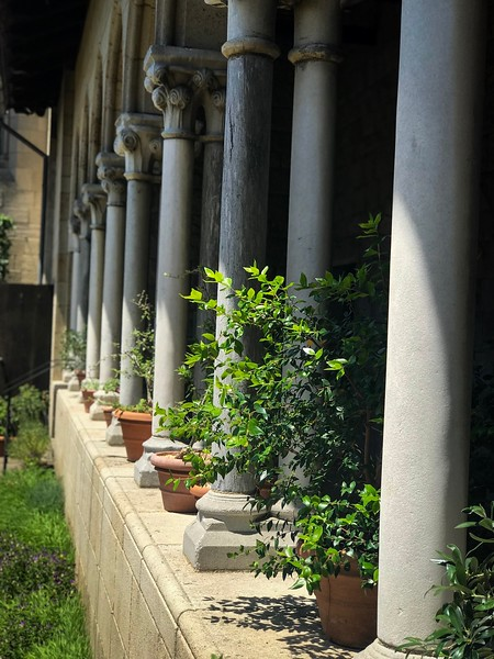 Pillars near the garden