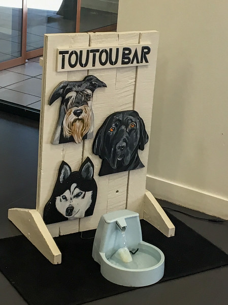 Toutou (Doggie) Watering Hole!