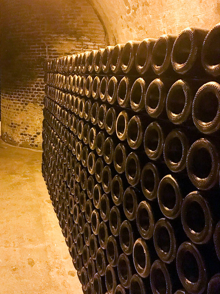 Champagne Bottles in the Chalk Cellars